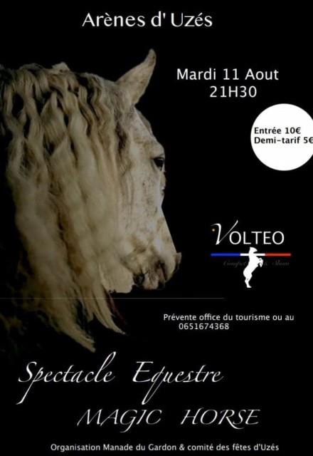 Magic Horse dans les arènes d'Uzès