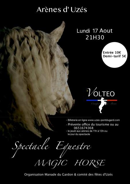 magic-horse-spectacle-equestre-6106