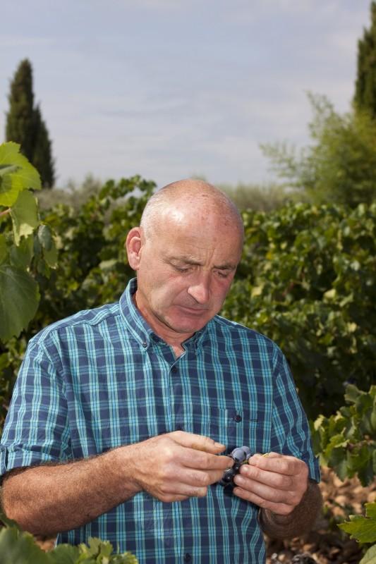 Benoît Combe